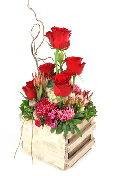 5-roses-in-box