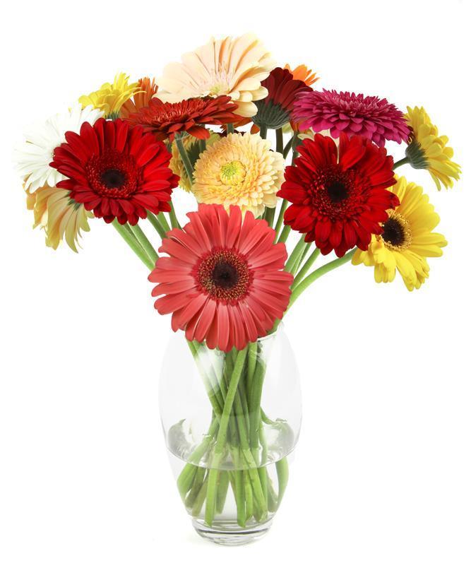 Flower Boutique Jeffreys Bay Gerbera Vase