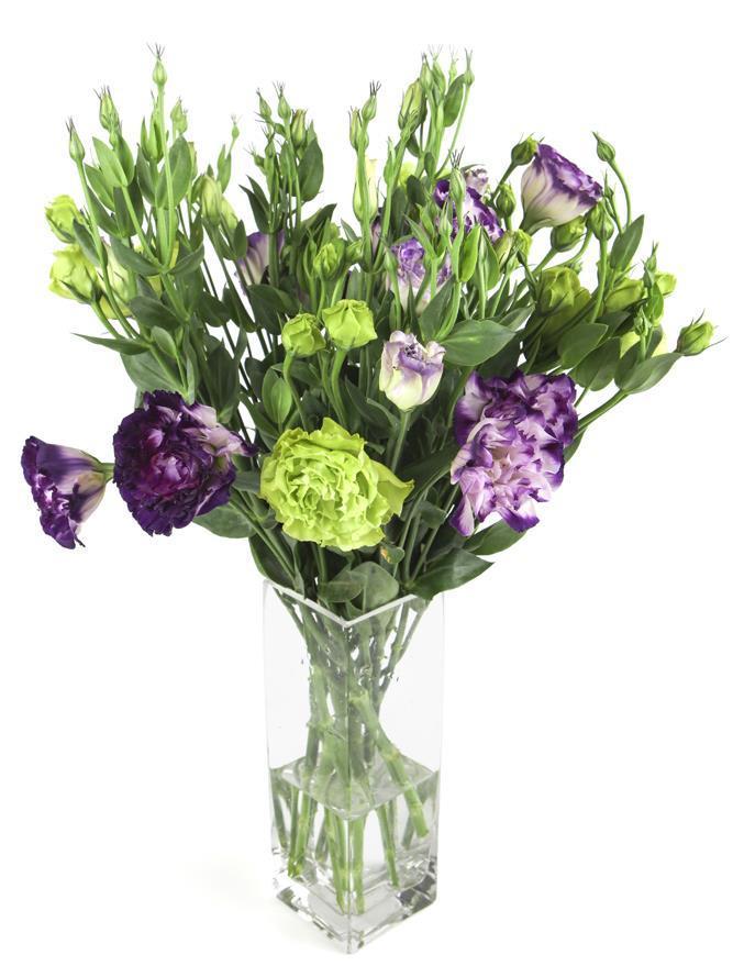 Lisianthus Vase (2)