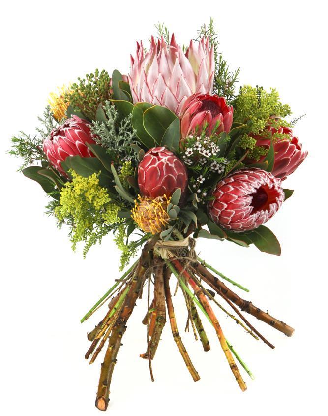 Flower boutique jeffreys bay protea bouquet for King protea flower arrangements